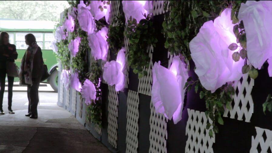 immersive-ltd_lighting-installation_chelsea-flower-show_100-anniversary_01-896×504