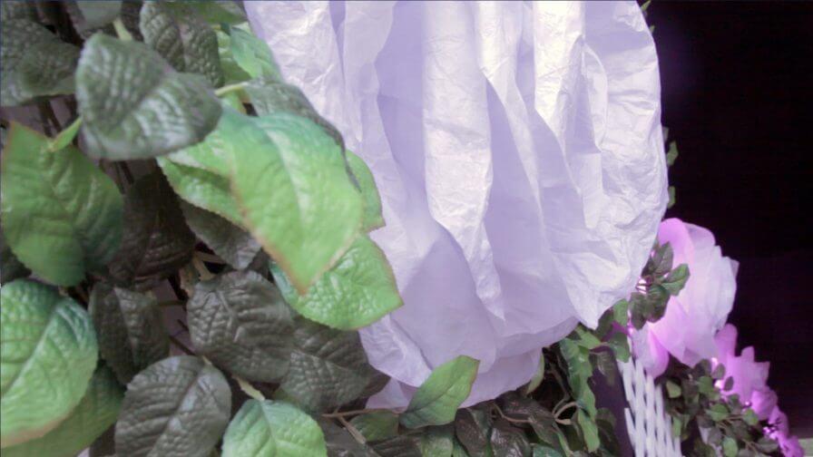 immersive-ltd_lighting-installation_chelsea-flower-show_100-anniversary_06-896×504