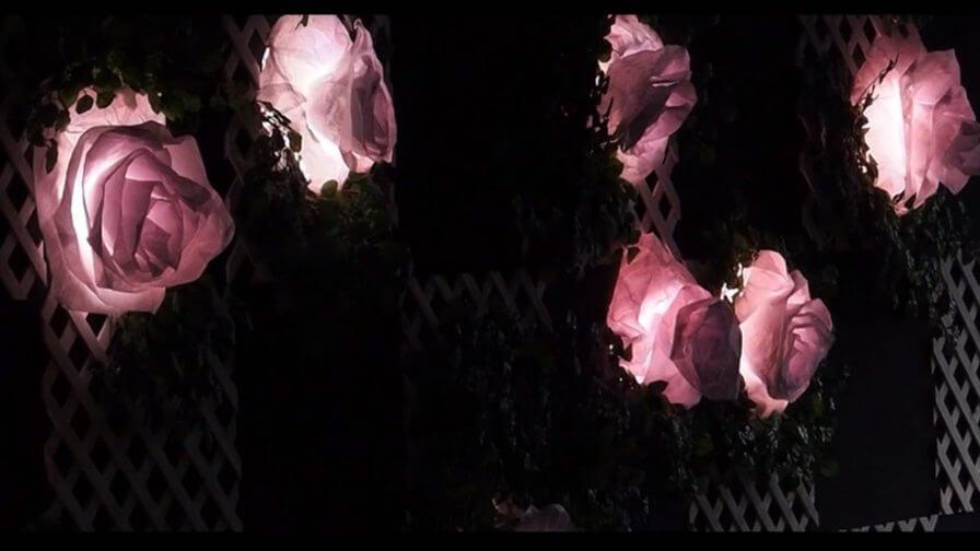 immersive-ltd_lighting-installation_chelsea-flower-show_100-anniversary_07-e1429145086668-896×504-1
